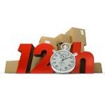 garantované doručení do 12h