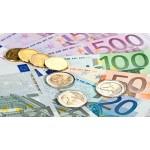 přijímáme platby i v EURO