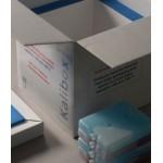 Kalibox - přepravní box